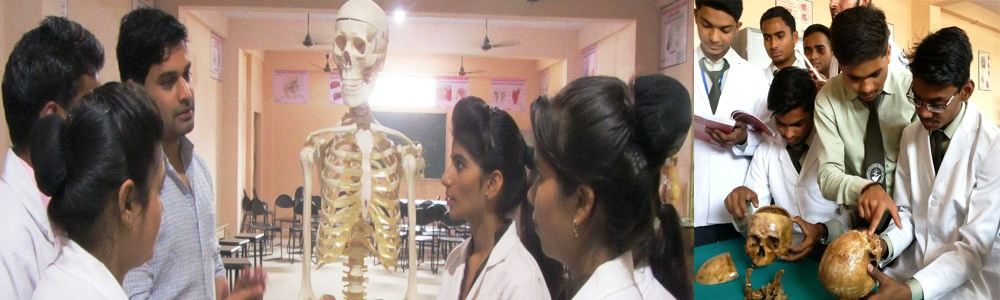 Overview of Sanjeevani Ayurvedic Medical College